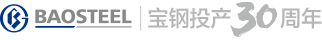 baosteel_logo